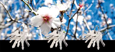 Design Geschenkidee Blumen