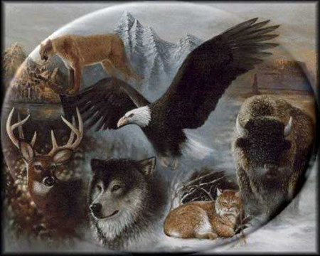 Animaux totems