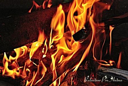 Schamanisches Feuer, Schamanische Reise, Schamanische Heilreise, Seelenverträge aufspüren, Seelenverträge auflösen, Reise in die Anderswelt, Region Hannover, Wedemark, bundesweit