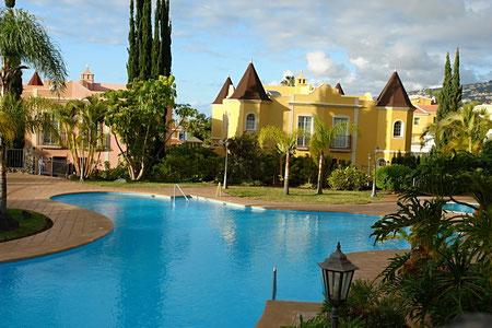 Interessant geschwungener Pool mit Palmen eingefasst.