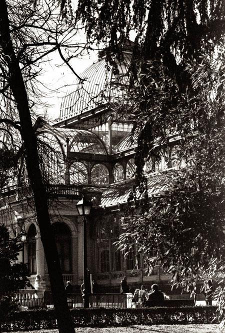 El Palacio de Cristal en el Retiro