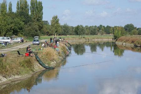 Le LAYON à Chalonnes sur Loire