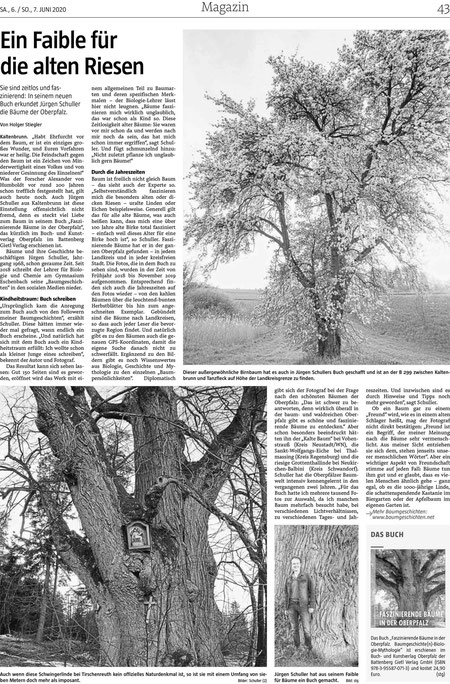 """Zeitungsartikel """"Faszinierende Bäume in der Oberpfalz"""""""