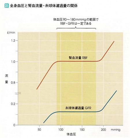全身血圧と腎血流量・糸球体濾過量の関係