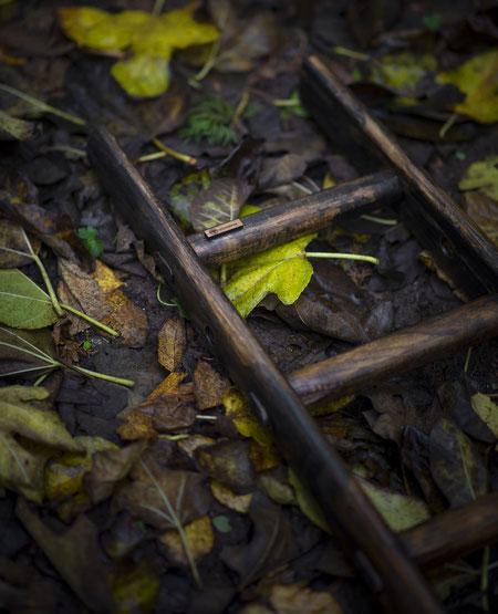 Scala a pioli in legno con tonalità di sottobosco - Wooden ladder with undergrowth tones by ellecuorea