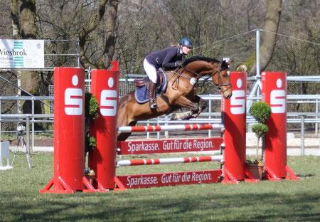 Steffi Grebe und Quitte im Springpferde-L