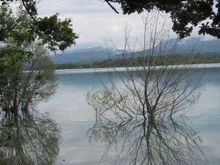 Le lac de Montbel en Ariège