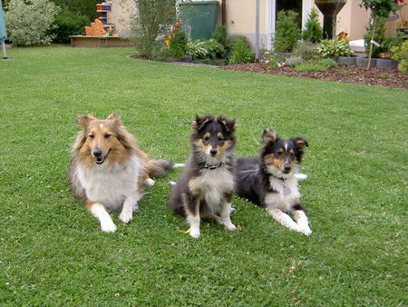 Karina, Emelie und Yason Benji, genannt Linus