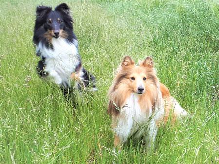 Wunderful Alina (Maya) und Nelly