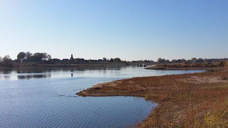 Baden und Picknick an der Elbe, Prignitz