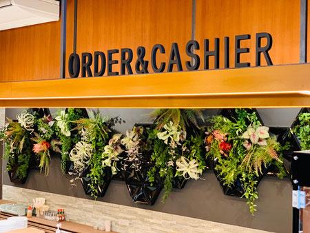 室内緑化で癒しの空間演出 ショーウインドウにも似合います