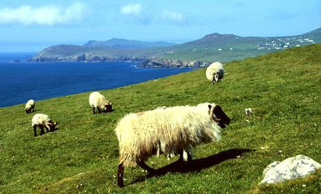 Foto: irland-tips.de