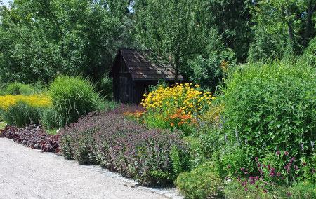Sonnenbeet im botanischen Obstgarten