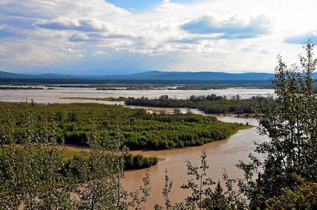 Der endlos breite Tanana River