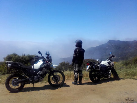 Nebel im Tuna Canyon