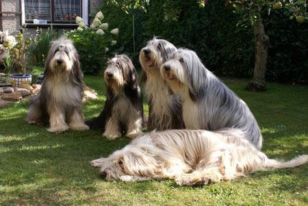 Die EMC Familie: Felix, Ellie, Chicco, Schwester Fanny und Opa Byron, Juli 2010