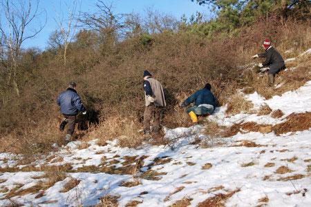 """In den """"Schäferbergen"""" 2011 bei sonnigem Winterwetter"""
