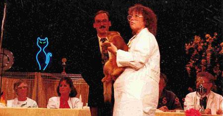 Katzenausstellung SDRV, Kurt Ellenberger, im Hintergrund: K. de Bruin, B. Kuhmey, J. P. Maas, R. Gonsior