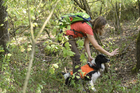 Dr. Annegret Grimm-Seyfarth setzt Artenspürhund Zammy zur Suche an. Foto: Daniel Peter