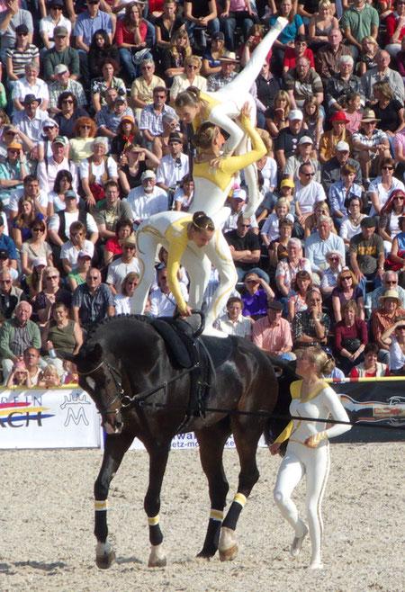 """""""VOLTIGE""""/""""Vaulting"""", Hengstparade Marbach 2009/Marbach Stallion Parade 2009, Marbach (Gomadingen), Germany, 09.09.2009, Lumix Fz18. Foto: Eleonore Schindler von Wallenstern."""
