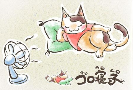 猫って良く寝るから寝子なのね~
