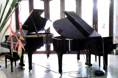 bali piano party