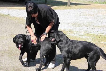 Besuch bei Luke und Sam am 25.04.2011