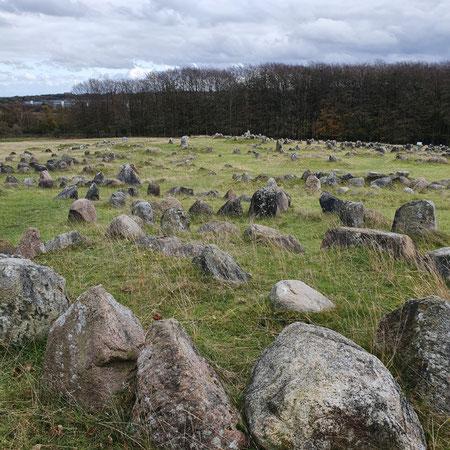 Vikingbegraafplaats, Wat te doen in Aalborg. Aalborg met kinderen.