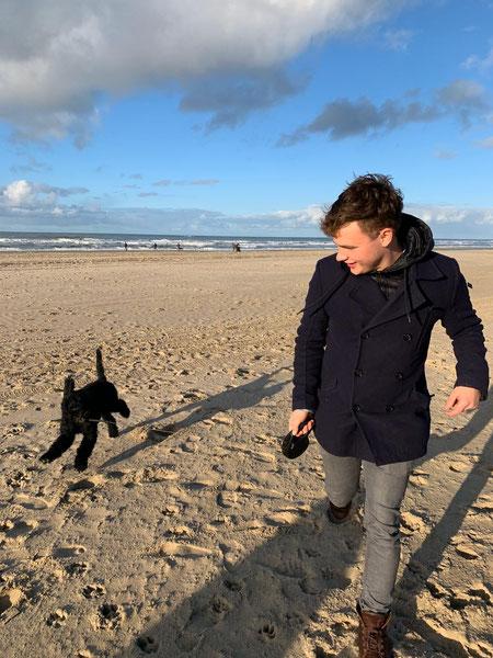 Zoon met hond, Labradoodle, Texel, strand