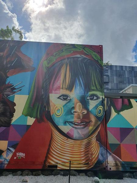 Kobra, Wynwood walls. Miami