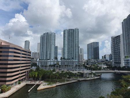 Skyline Miami, Wolkenkrabbers