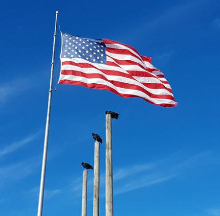 Amerikaanse vlag, rootsreis, stars and stripes