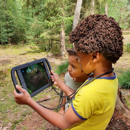 Dwingelderveld, interactieve wandeling, tablet wandeling, the nature game, boslounge