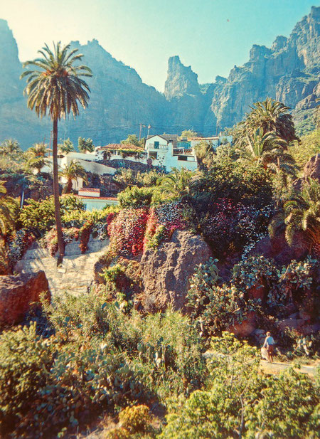 Hier kommt man nur mit ´nem Auto hin. Ein Tal in der Inselmitte, Gran Canaria