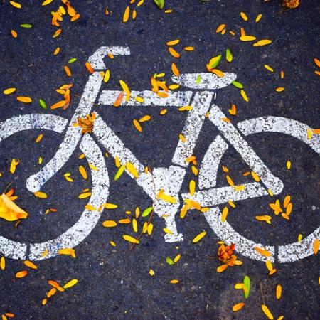 Fiets, fietspad, epilepsie.
