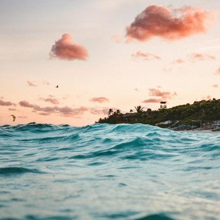 Roze wolken, zee, adoptie