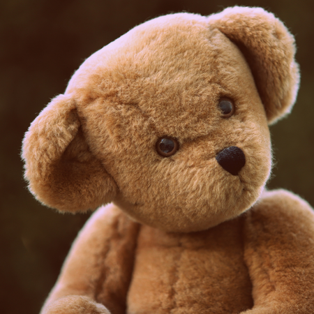 Teddybeer, knuffel, knuffelbeer.