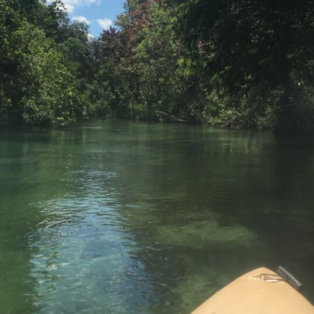 Weeki Wachee rivier.