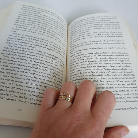 Zielsverwant, roman, boekreview.