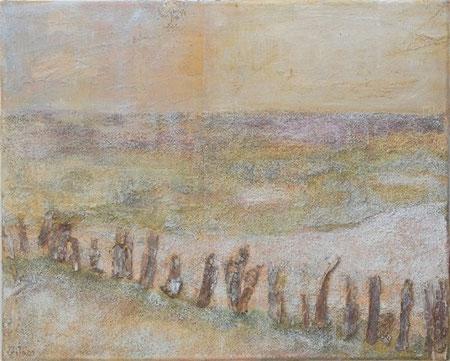Camargue 1, 2005 _____ 40x50 Acryl, Papier, Sand, Rinde auf Baumwolle
