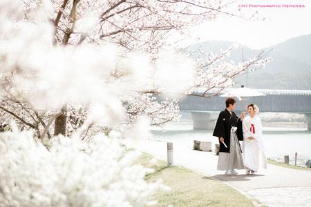 桜も満開で風情があります☆