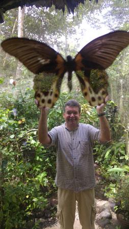 Der Autor in einer Schmetterlingsfarm auf Bohol