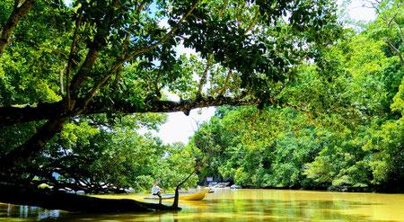 Underground River Tour, Palawan