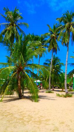 Honda Bay Island Hopping, Palawan