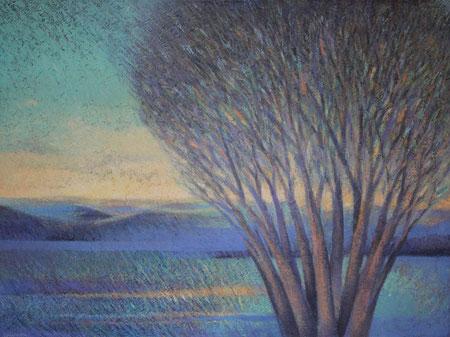 Sacred Tree #6