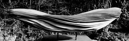 Pear wood -poirier 1m10cm©Isabelle Dethier