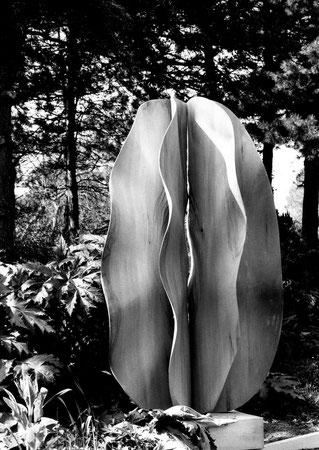 Lime wood- tilleul 1m 90cm ©Isabelle Dethier Photo © Helene de Mevius
