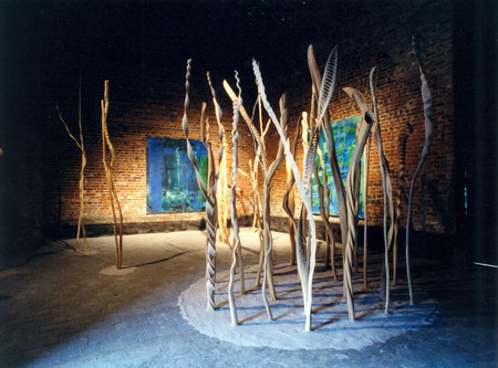 Sycomore-erable ,willow-saule ,chataignier-chesnut etc ... from 1m70cm to 12m70cm ©Isabelle Dethier