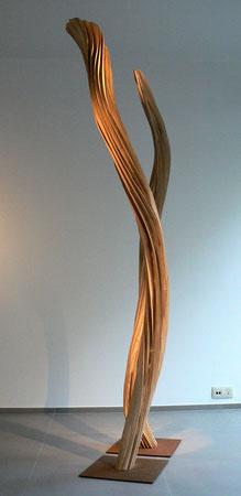 ash wood 2m20 cm & 1m99cm- frêne ©isabelle dethier