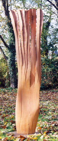 pear wood - poirier  2 m ©Isabelle Dethier..